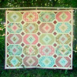 1st time Quilting for a Quilt Store