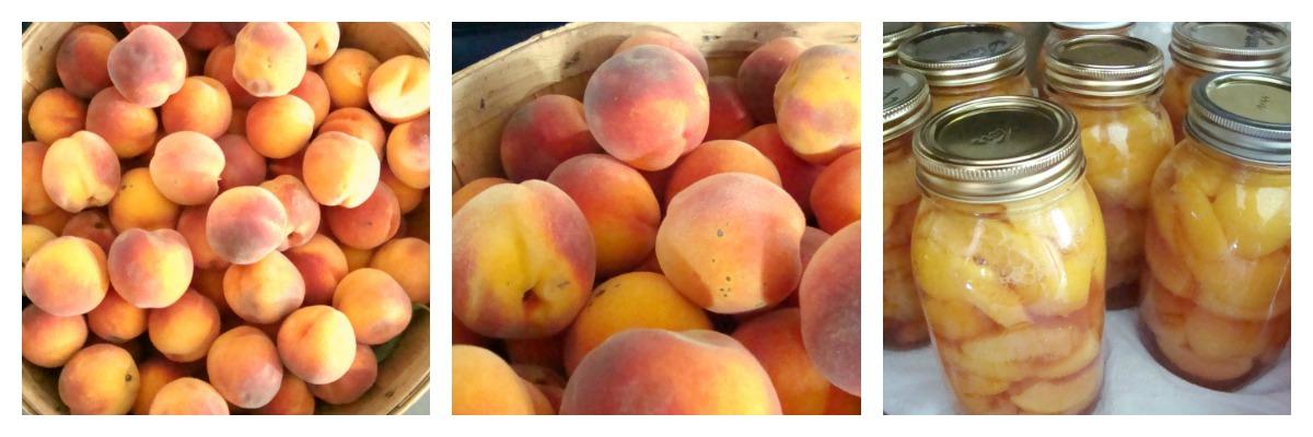 peachcollage