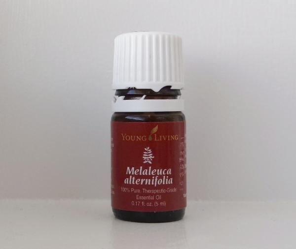 essential oil melalueca