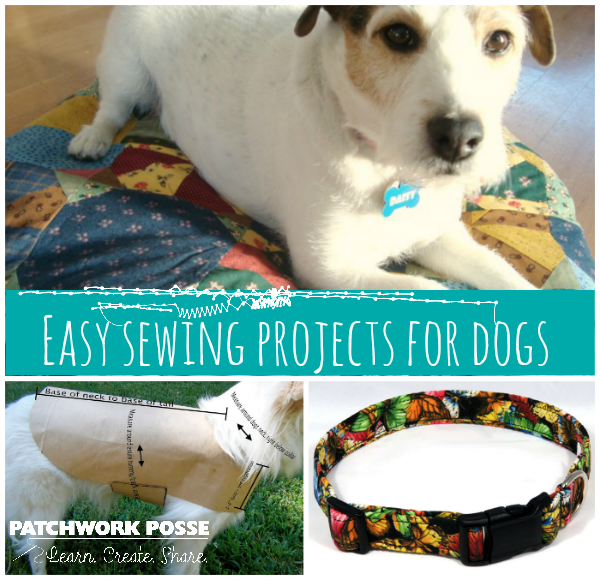 easy sewing projects for dogs