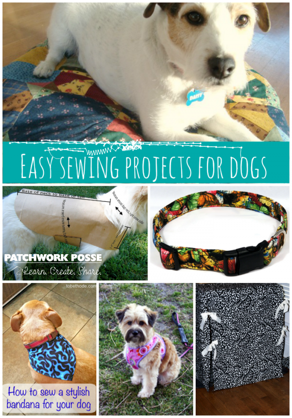 10 awesome sewing projects for dogs. Learn how to sew a bed, leash, toy, food mat, jacket, collar and much more! All free tutorials and projects.