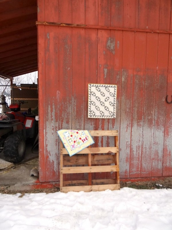 red barn where I take quilt pictures. good light and a fun alpaca in the mix. do you see him?